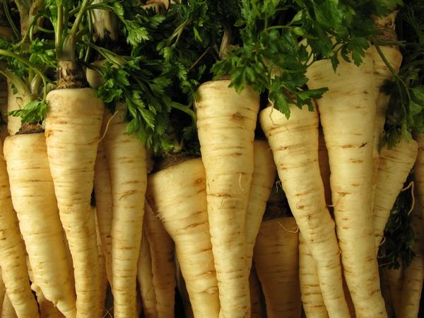 Warzywa - pietruszka